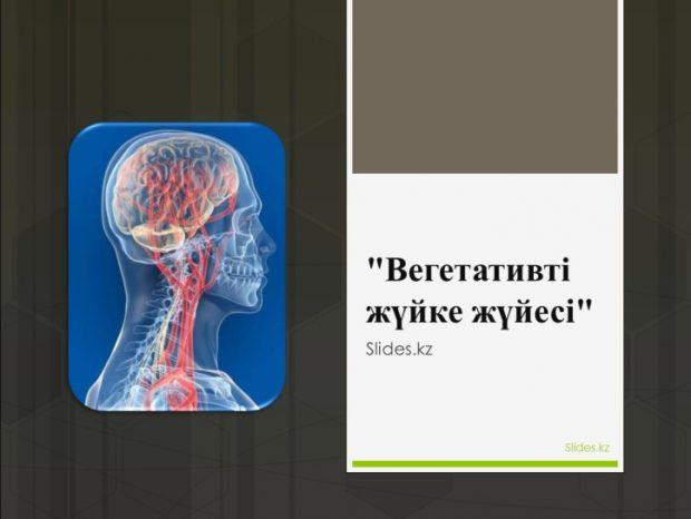 «Вегетативті жүйке жүйесі» слайд