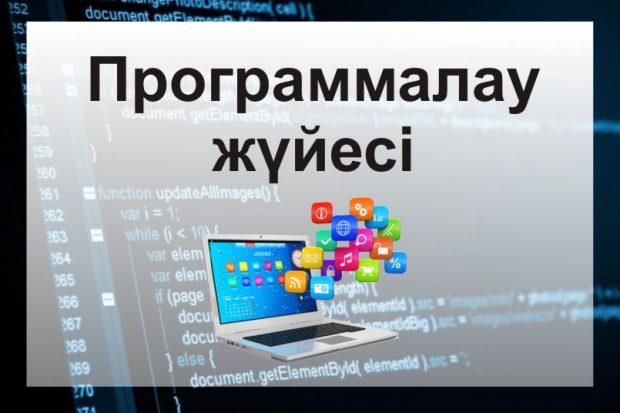 Программалау жүйесі туралы слайд